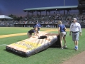 Charleston Riverdogs Giant CornHole