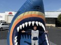 Clearwater Threshers Inflatable Shark