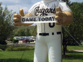 Kane County Cougars Inflatable Mascot