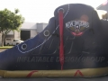 New Orleans Pelicans Basketball Shoe