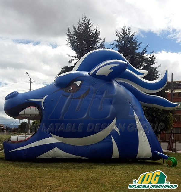 Inflatable Clear Springs Mustang High School