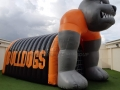 Orange Grove Custom Inflatable Bulldogs Entryway