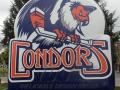 Bakersfield Condors Logo .JPG