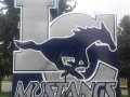 mustangs logo tunnel combos