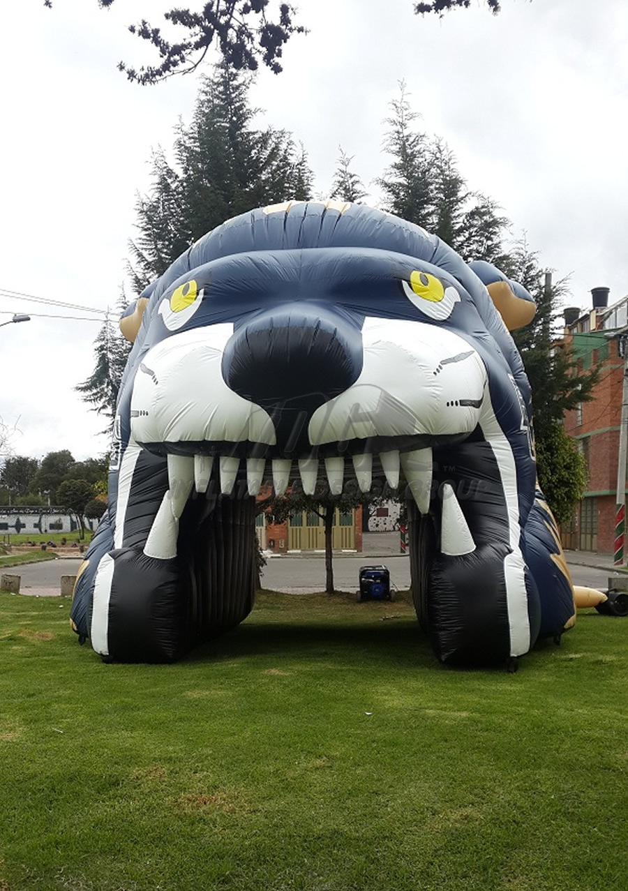 Inflatable Big Cat Head
