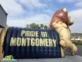 Montgomery lion 2
