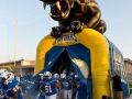 Inflatable Panther Index