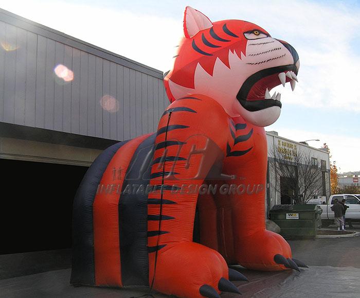 Auburn Entryway Infaltable