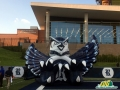 rice owl inflatable front