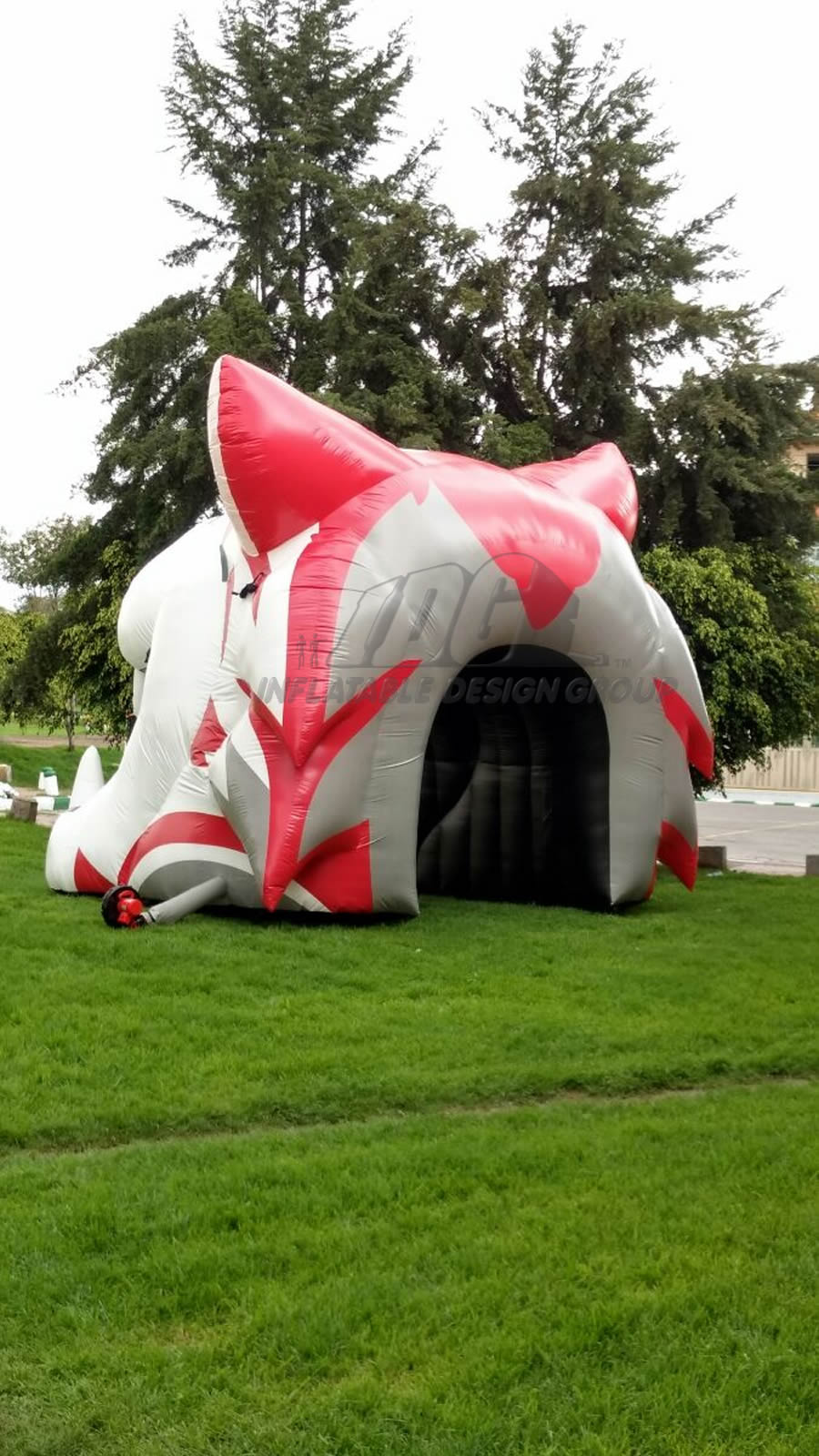 Inflatable Wildcat Head Rear View