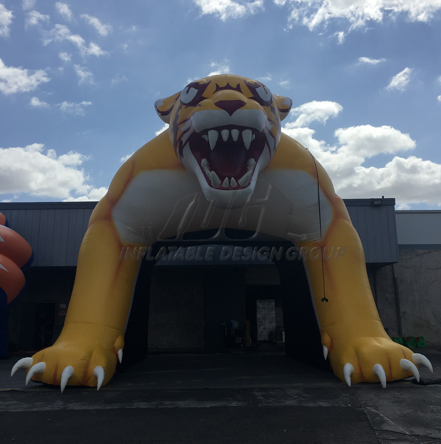 Inflatable Wildcat Tunnel Front View